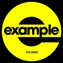 Stay Awake (Remixes)/Example