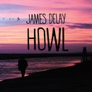 Howl/James Delay