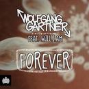 Forever feat.will.i.am/Wolfgang Gartner