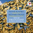 Schmidt: Symphony No. 2 - Strauss: Dreaming by the Fireside/Semyon Bychkov & Wiener Philharmoniker