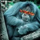 Monkey Flute (Ninetoes Remix)/International Baby