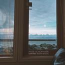 Ganoven (Akustik Session)/Antje Schomaker