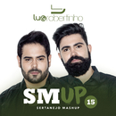 Sertanejo Mashup 15/Lu & Robertinho