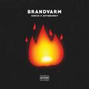 Brandvarm feat.Artigeardit/ICEKIID