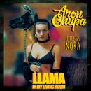 Llama In My Living Room/AronChupa & Little Sis Nora