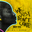 We Just Don't Care (DJ S.K.T Remix) feat.Shingai/Shy FX