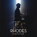 Sleep Is a Rose/RHODES