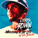 Welcome To My Life feat.Cal Scruby/Chris Brown