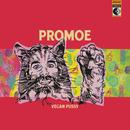 Vegan Pussy/Promoe
