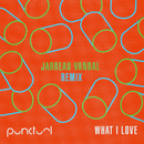 What I Love (Jarreau Vandal Remix)/Punctual