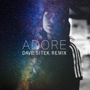Adore (Dave Sitek Remix)/Amy Shark
