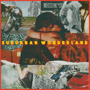 Suburban Wonderland/The Heirs