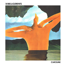 Caroline/The Belligerents