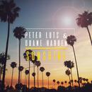 Sunshine (Radio Edit)/Peter Luts & Duane Harden