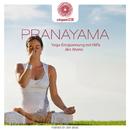 entspanntSEIN - Pranayama (Yoga-Entspannung mit Hilfe des Atems)/Davy Jones