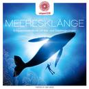 entspanntSEIN - Meeresklänge (Entspannende Musik mit Wal- und Delphingesängen)/Davy Jones
