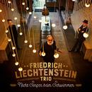 Nicht Singen beim Schwimmen (Radio Edit) feat.Marlene Schuen,Marco Möller/Friedrich Liechtenstein Trio