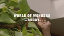 World Of Wonders (Official Video)/Buddy