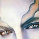 SER MAIOR-UMA HISTÓRIA NATURAL/Delfins