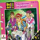 050/Freundinnen in Gefahr/Die drei !!!