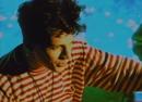 Des fleurs pour Salinger (Official Music Video)/Indochine