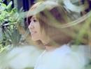 ZHEN AI DE LU XING/Iris Lin