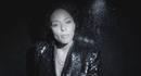 No More (Videoclip)/Joy Denalane