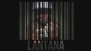 All Hustle, No Luck/Easy Lantana