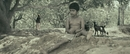 "Thannandhani (From ""Vettattam"")/Sree Sai V"