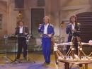 Der letzte Bolero (ZDF Musik liegt in der Luft 09.04.1995) (VOD)/Die Flippers