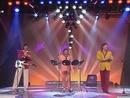 Sieben Tage (ZDF Hitparade 13.06.1990) (VOD)/Die Flippers