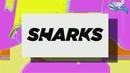 Wait/Sharks