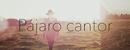 Pájaro Cantor/Abel Pintos