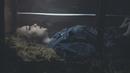 Lifeline (Official Video)/Jule Vera