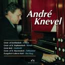 Veel Gevraagde Improvisaties Op Bekende Nederlandse Orgels/André Knevel