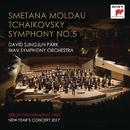 Berlin Philharmonic Hall New Year's Concert 2017/David Sungjun Park & MAV Symphony Orchestra