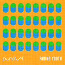 Fading Youth - EP/Punctual