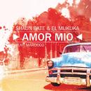 Amor Mio feat.Marocco/Shaun Bate