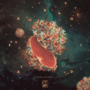 Dawn At Home (Remixes)/Bearoid