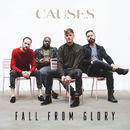 Fall From Glory/Causes