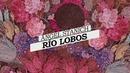 Río Lobos (Lyric Video)/Angel Stanich