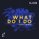 What Do I Do (Dunisco Remix)/SJUR