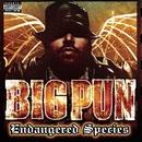 Endangered Species/Big Pun