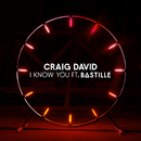 I Know You feat.Bastille/Craig David