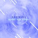 Sorry Not Sorry (The ShareSpace Australia 2017)/Damielou