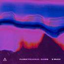 2 MUCH feat.24hrs/Flosstradamus
