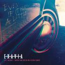Even If It Hurts a Little (David Van Bylen Nu-Disco Remix) feat.Rizha,David Van Bylen/Exavia
