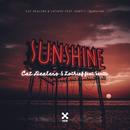 Sunshine/Cat Dealers, LOthief and Santti
