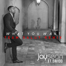 What You Want (Team Salut Remix)/Jay Sean & Davido