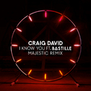 I Know You (Majestic Remix) feat.Bastille/Craig David